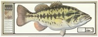 World Record Largemouth Bass Fine Art Print