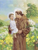 St Francis Fine Art Print