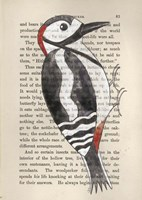 Great Spotted Woodpecker Fine Art Print