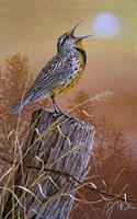 Meadowlark Painting Fine Art Print
