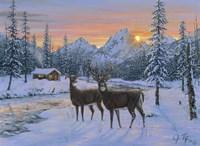 Whitetail & Cabin Fine Art Print