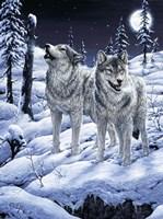 Lunar Calling Fine Art Print