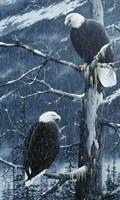 Another Rainy Day Fine Art Print