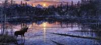 Moose Lake Fine Art Print