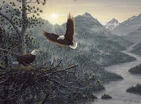Eagles Nest Fine Art Print