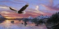Silent Wings Of Freedom Fine Art Print