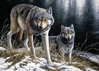 Over The Ridge Wolves Fine Art Print