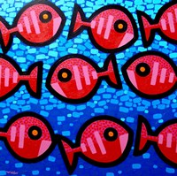 9 Happy Fish Fine Art Print
