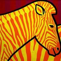 Cadmium Zebra 1 Fine Art Print