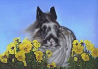 Flower Power Bunny Fine Art Print