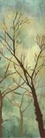 De La Terre VI Fine Art Print