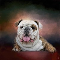 Bulldog Hanging Out Fine Art Print