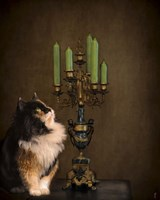 Cat And The Candelabra Fine Art Print