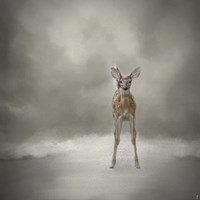 Stand Strong Little Fawn Fine Art Print