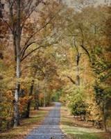 Autumn Passage 2 Framed Print