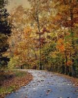 Autumn Splash Fine Art Print