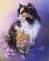Calico Kitty In The Garden Fine Art Print