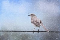 Mockingbird In The Snow Fine Art Print