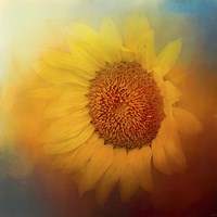 Sunflower Surprise Fine Art Print