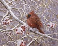 Cardinal and Wild Berries Fine Art Print