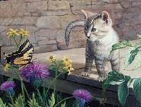 Kitten & Butterfly Fine Art Print