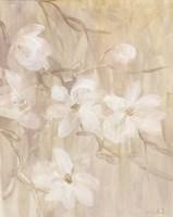 Magnolias I Framed Print
