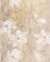 Magnolias IV Framed Print