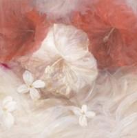 Hibiscus IV Fine Art Print