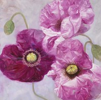 Purple Poppies I Fine Art Print