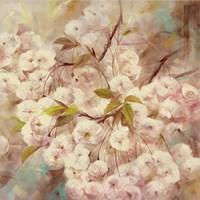 Rose Bush I Framed Print