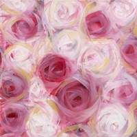 White and Pink Roses Fine Art Print