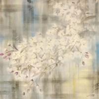 White Cherry Blossom IV Fine Art Print