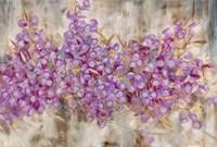Lavender Bells Fine Art Print