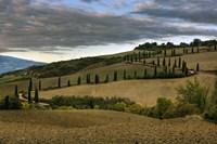 Italy V Fine Art Print