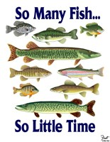 So Many Fish So Little Time Fine Art Print