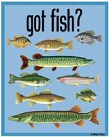 Got Fish Fine Art Print