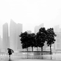 Singapore Umbrella Fine Art Print