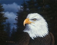 The Face Of Freedom Fine Art Print
