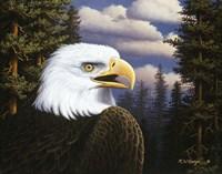 Proud & Free Fine Art Print