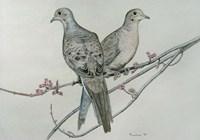 Two Birds On Branch Fine Art Print