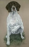 Dog  Five Fine Art Print