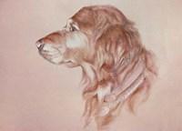 Dog Eight Fine Art Print