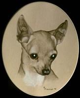 Dog Nine Fine Art Print