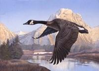 Goose Mtn Fine Art Print