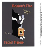 Boston's Fine Facial Tissues Fine Art Print