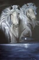 Enchanted Moonlight Dreams Fine Art Print