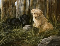 Lab Pup Pair Fine Art Print