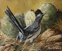Desert Runner Fine Art Print