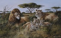 Lion Family Fine Art Print