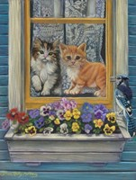 Our House Fine Art Print